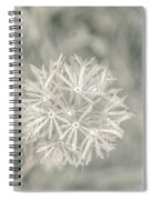 Silver Puff Spiral Notebook