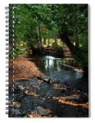Silver River Channel In Autumn Spiral Notebook