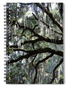 Silver Savannah Tree Spiral Notebook