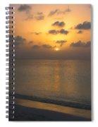 Silver Sea Spiral Notebook