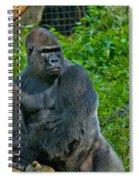 Silverback Gorilla  Spiral Notebook