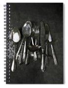 Silverware With Salt Spiral Notebook