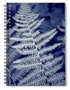 Silvery Fern Spiral Notebook
