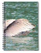 Silvery Softness Spiral Notebook