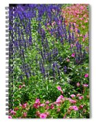 Simple Beauty - Purple And Pink Spiral Notebook