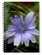 Simple Blue Spiral Notebook