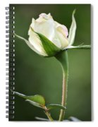 Simple Grace Spiral Notebook