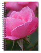 Simplicity Floribunda Rose Spiral Notebook