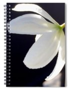 Simply Alone Flower Spiral Notebook