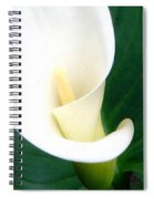 Simply Calla Lily Spiral Notebook