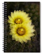 Simply Golden Cactus Flowers  Spiral Notebook