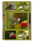 Simply Sipping Spiral Notebook