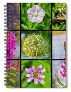 Simply Summer Wildflowers Spiral Notebook