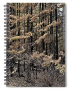 Singed Spiral Notebook