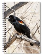 Singing A Song Spiral Notebook