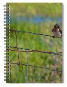 Singing Spiral Notebook