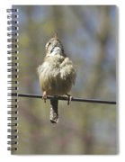 Singing His Heart Out - Carolina Wren - Thryothorus Ludovicianus Spiral Notebook