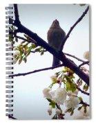 Singing Of Spring Spiral Notebook