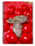 Singing Over Red Eggs Spiral Notebook