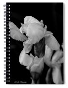 Singing Praise In Black And White Spiral Notebook