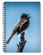 Singing Song Sparrow Spiral Notebook