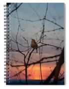 Singing Songs Of Spring Spiral Notebook