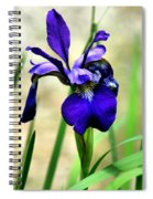 Single And Beautiful Spiral Notebook