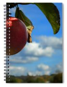 Single Apple Spiral Notebook