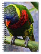 Single Beauty Spiral Notebook