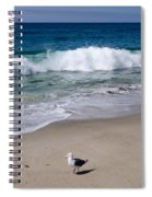Single Seagull On The Beach Spiral Notebook