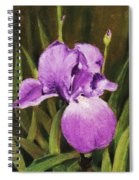 Single Iris Spiral Notebook