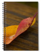 Single Leaf Spiral Notebook
