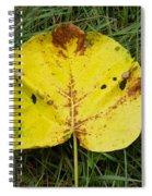 Single Leaf Spiral Notebook
