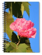 Single Pink Flower Spiral Notebook