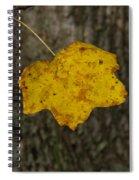 Single Poplar Leaf Spiral Notebook