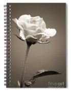 Single Rose Spiral Notebook