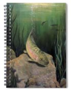 Single Trout Spiral Notebook