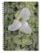 Single White Trillium Spiral Notebook