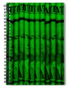 Singles In Green Spiral Notebook