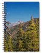 Siskiyous And Shasta Spiral Notebook