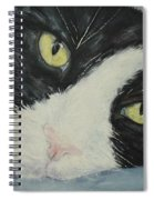 Sissi The Cat 1 Spiral Notebook