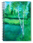 Sitting By The Pond Spiral Notebook