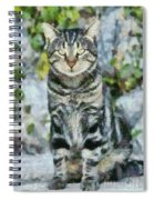 Sitting Cat Spiral Notebook