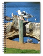 Sitting On A Log In The Bay Spiral Notebook