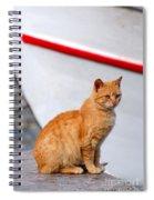 Sitting On Pier Spiral Notebook