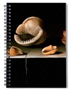 Six Shells On A Stone Shelf Spiral Notebook