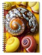 Six Snails Shells Spiral Notebook