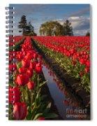 Skagit Glorious Day Spiral Notebook