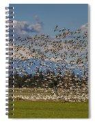 Skagit Snow Geese Liftoff Spiral Notebook