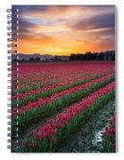 Skagit Valley Predawn Spiral Notebook